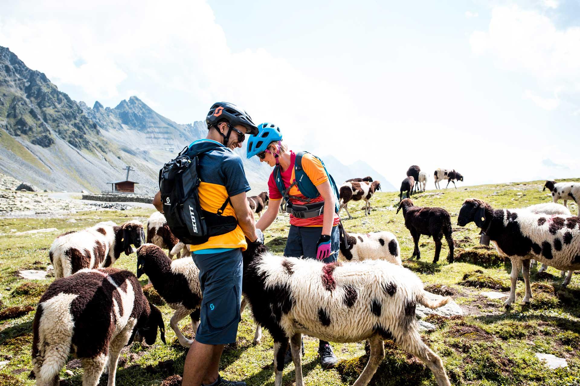 alpengasthof-dortmunder-huette-sommer-galerie-biken-pause